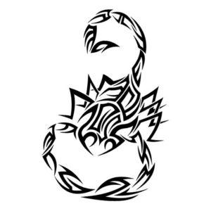 Наклейка Скорпион 5