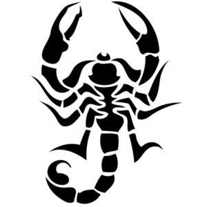 Наклейка на авто Скорпион 13