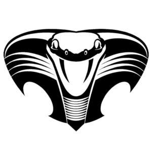 Наклейка на авто Cobra 4