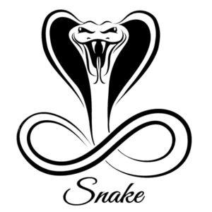 Наклейка на авто Snake 3