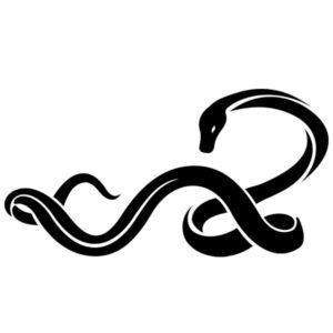 Наклейка на авто Змея 6