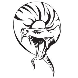 Наклейка на авто Змея 4
