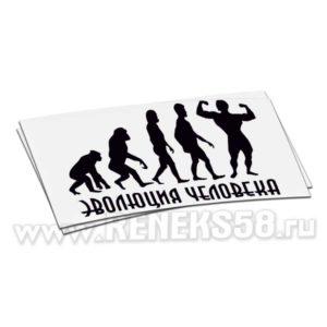 Наклейка Эволюция человека