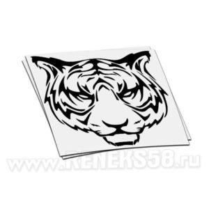 Наклейка Тигр грозный взгляд